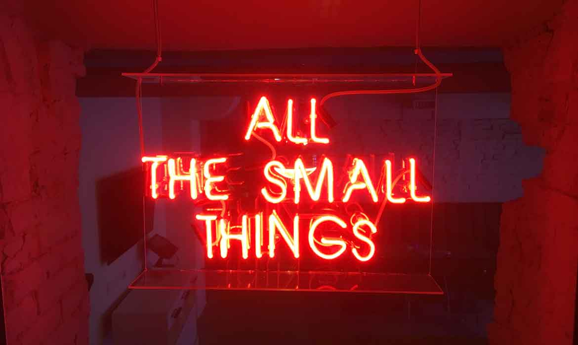 "Neon ""All The Small Things"""