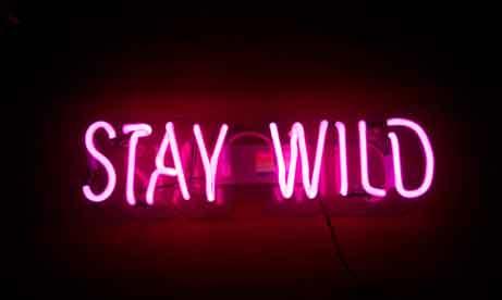 """Неоновая вывеска """"Stay Wild"""" (миниатюра)"""