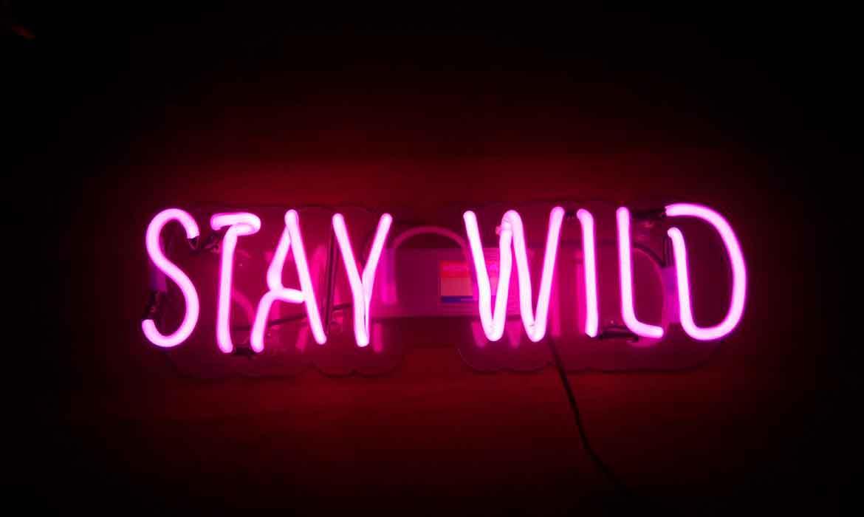 """Неоновая вывеска """"Stay Wild"""""""