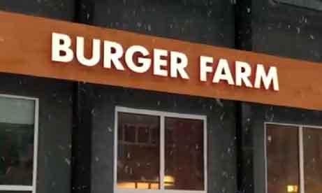 """Объемные световые буквы """"Burger Farm"""" (миниатюра)"""